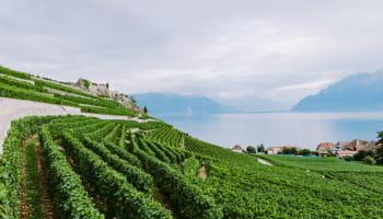 Circuits touristiques canton de Geneve avec guid